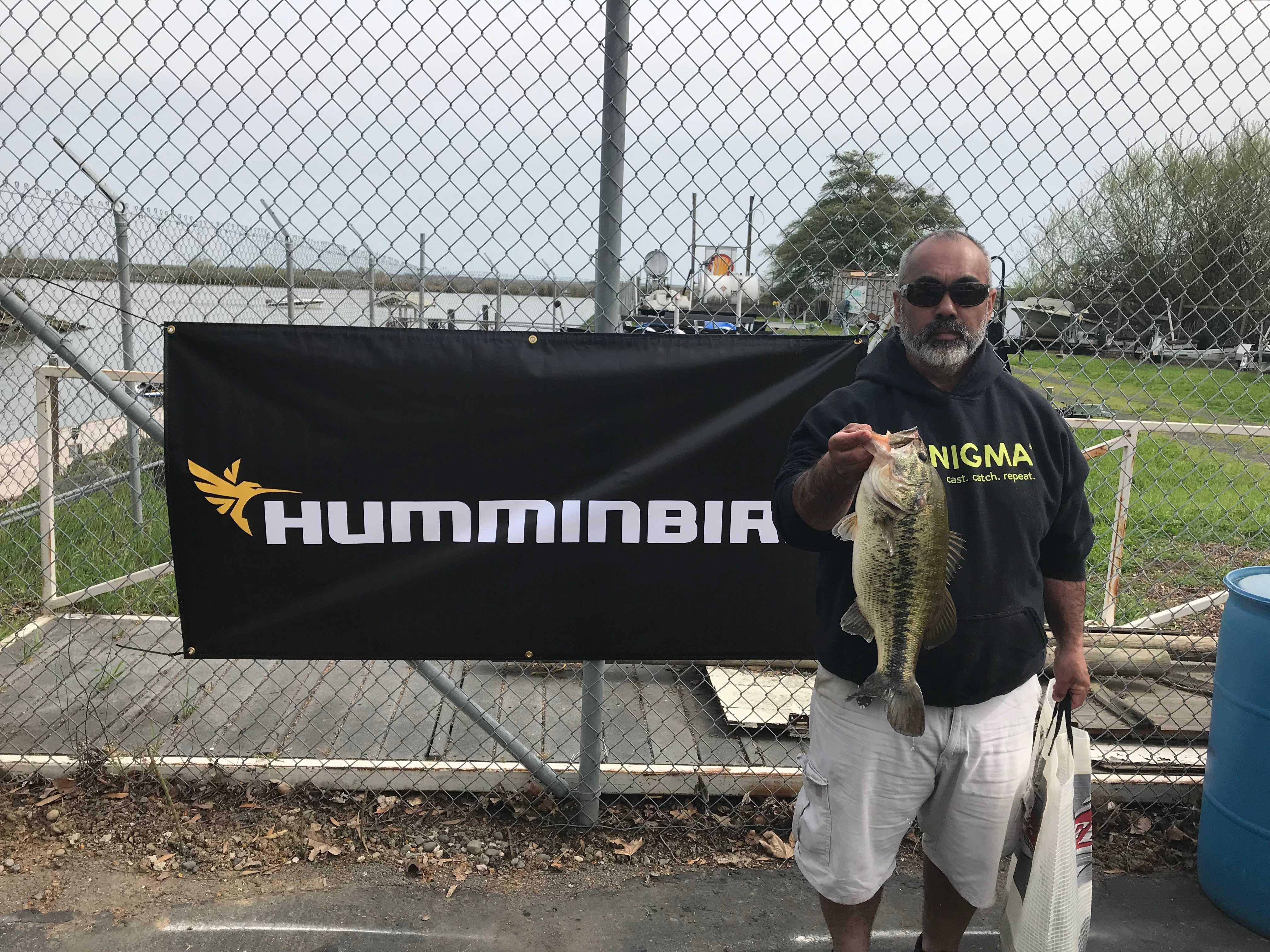 California Bass Federation | California Bass Fishing